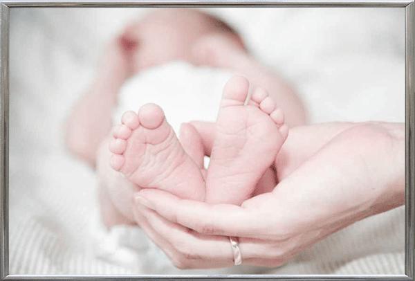 英語で「足」と「脚」、「指」と「趾」