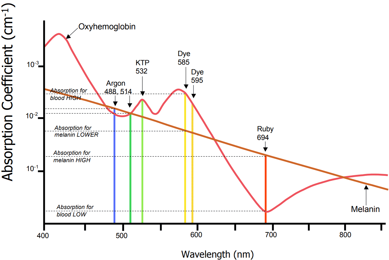 hight resolution of vascular absorption spectrum chart
