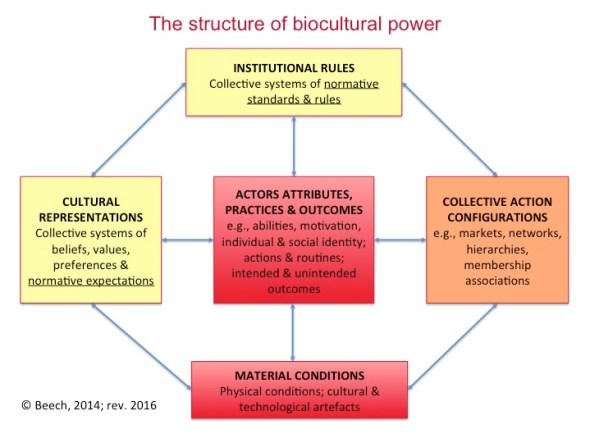 Structure of Biocultural Power 1