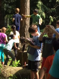 Outdoor classroom learning