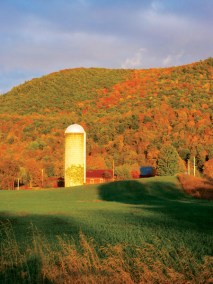 Silo-and-Hill-fall