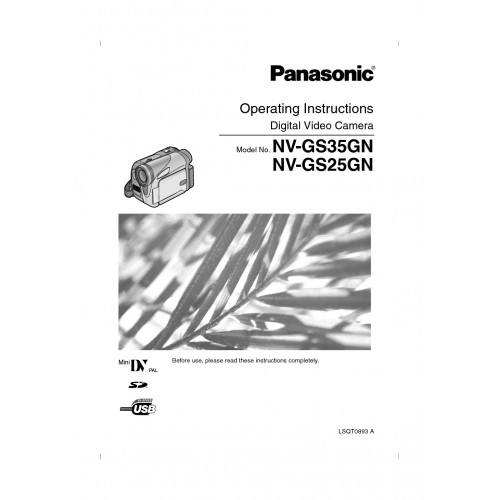 Panasonic NV-GS25GC-S Camcorder Manual Technical Details