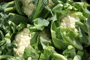 cauliflower-camelcsa-210809