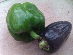 purple-peppercamel-csa-270811