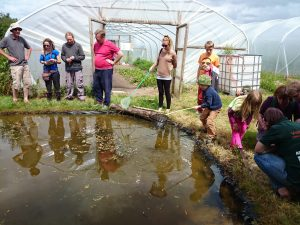 OFS2014-pond-dipping1-camelcsa