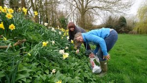 foraging-wild-garlic-camelcsa-170317