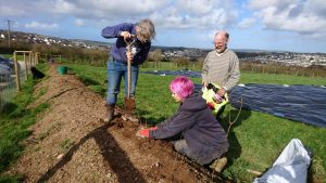 planting-hedge-treravenfarm-camelcsa-180219