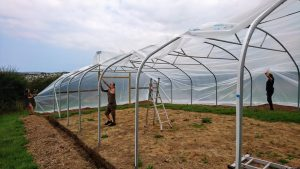 cover-second polytunnel-treraven-camelcsa-3-010819