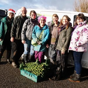 Christmas-vegbox-picking-packing-team-camelcsa-201219