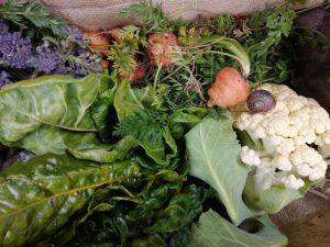 veg-box-camelcsa-030420