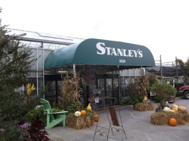 StanleysWeb_3