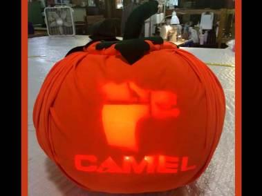 camelpumpkin