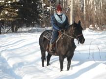 Froid au Canada à cheval
