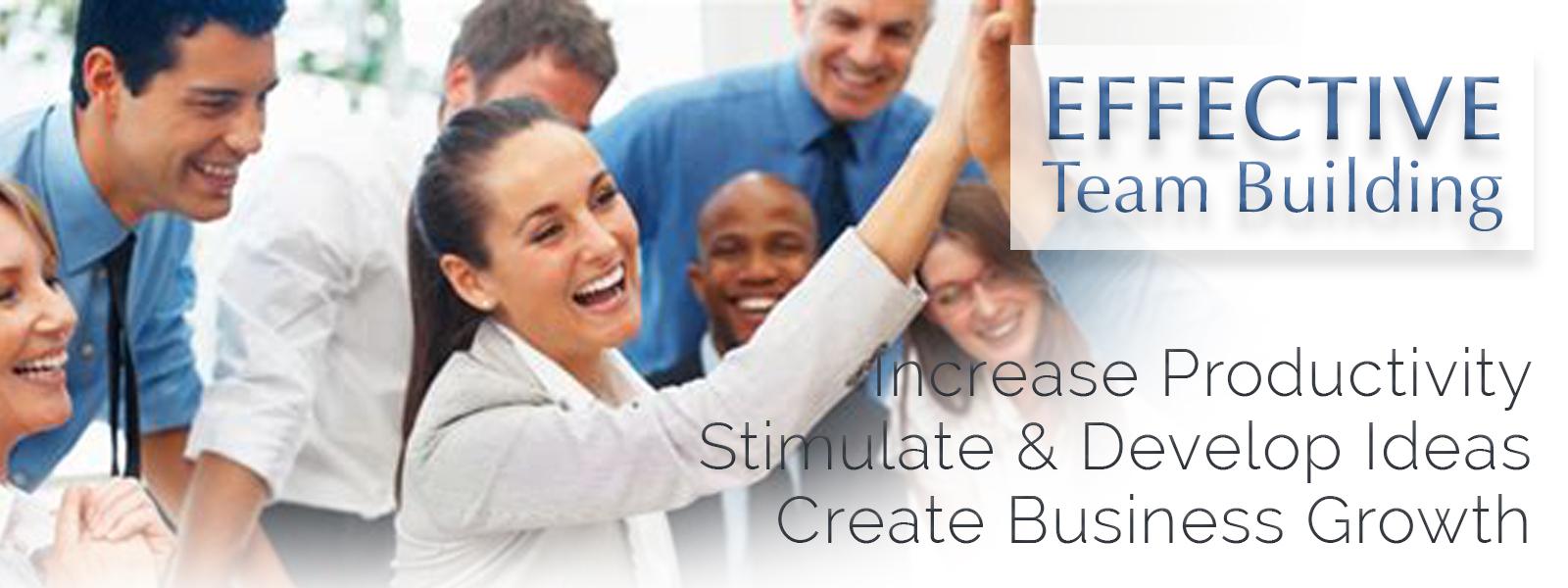 Camelot Enterprises, LLC - est. 1994   Effective Team Building Training and Consultations