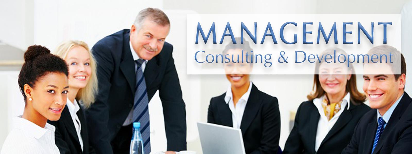 Camelot Enterprises, LLC - est. 1994 | Professional Business Management Consulting Services