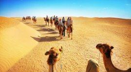 Luxury Trip Morocco