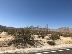 Driving through the last desert on our trip