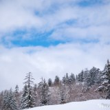 旭岳雪景色