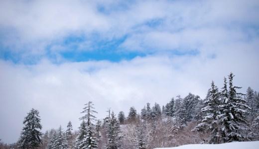 NikonD5300 雪の景色を撮影