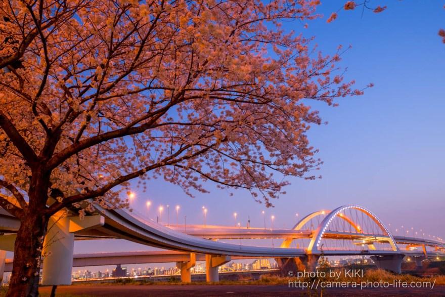 五色桜大橋 夜景