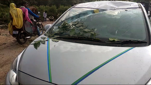 सांची में कार पर गिरा पेड, दो लोग थे सवार