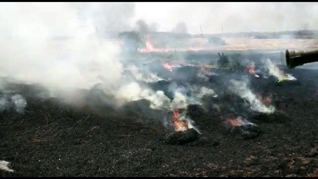 Wheat Field Catches Fire