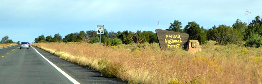 Kaibab National Forest Sign