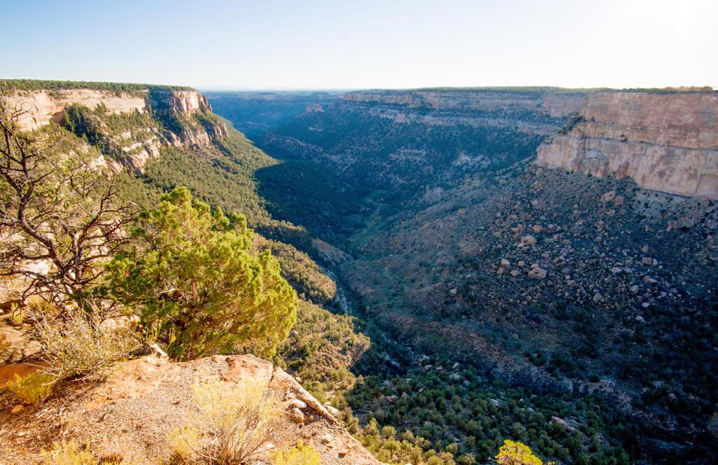 Navajo Canyon View