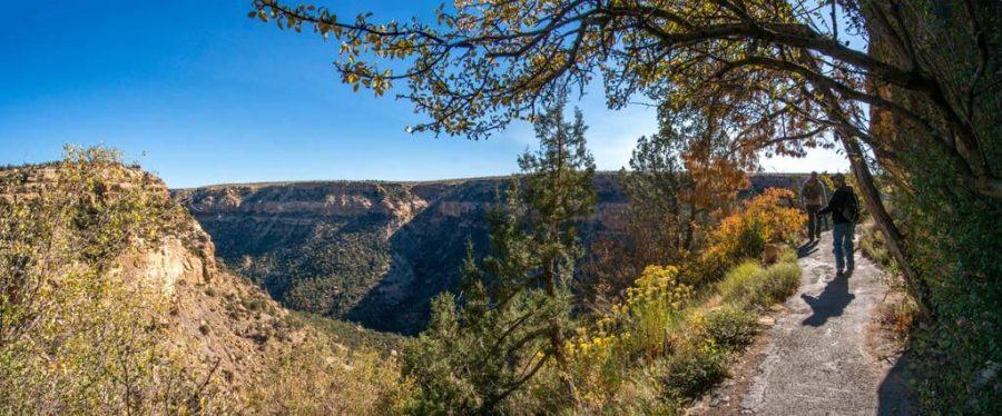 Mesa Verde National Park Canyons