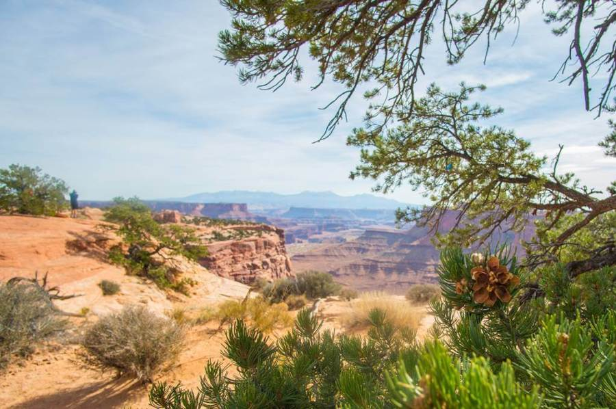First overlook view at Canyonlands National Park