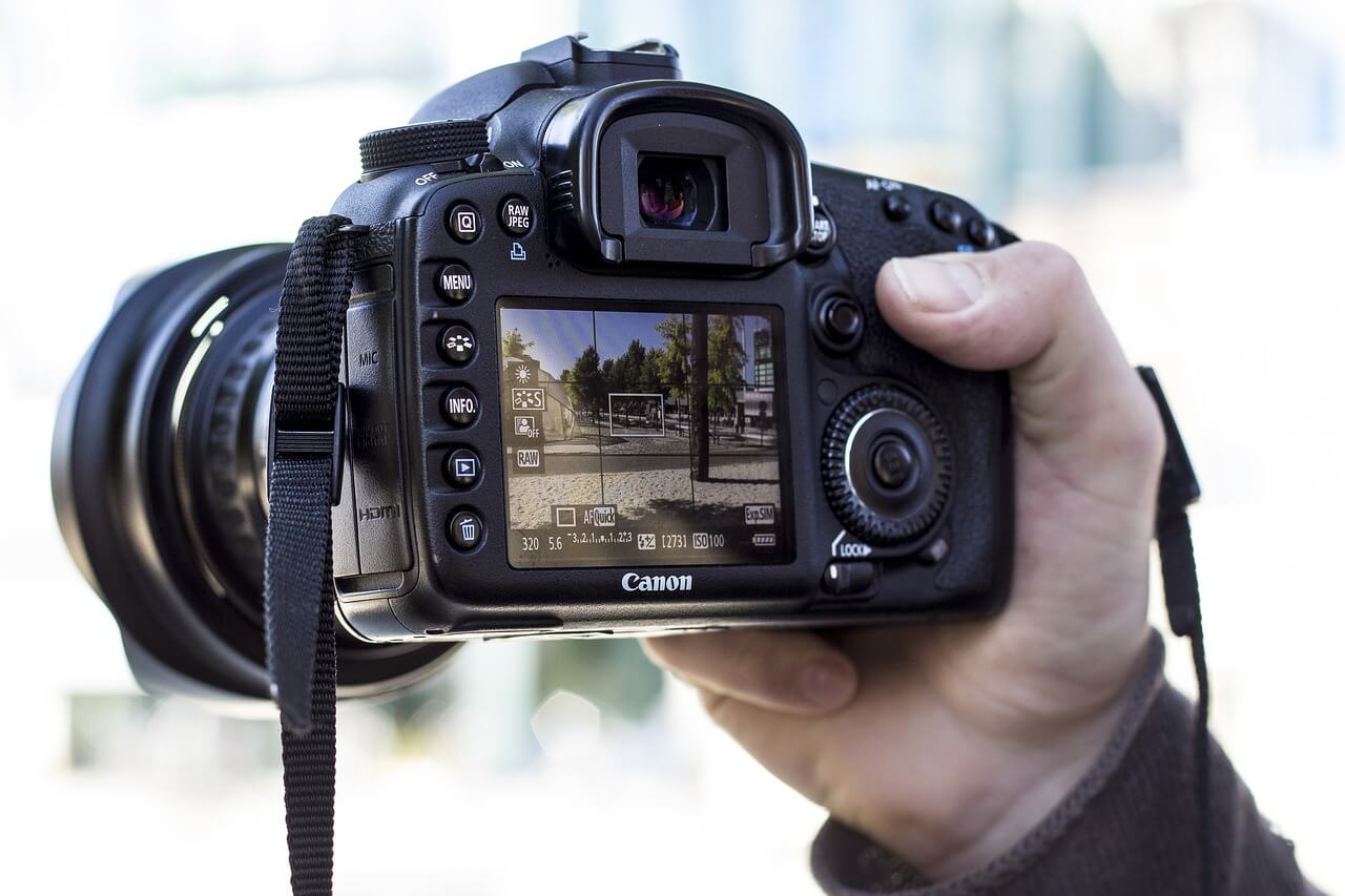Bridge Camera or DSLR for a Novice1