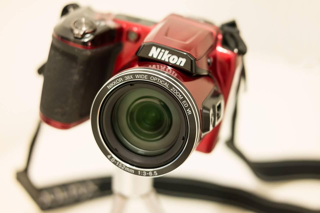 Bridge Camera or DSLR for a Novice2