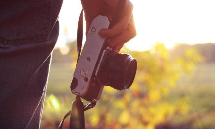 Becoming a pro photographer: which agency should you choose?