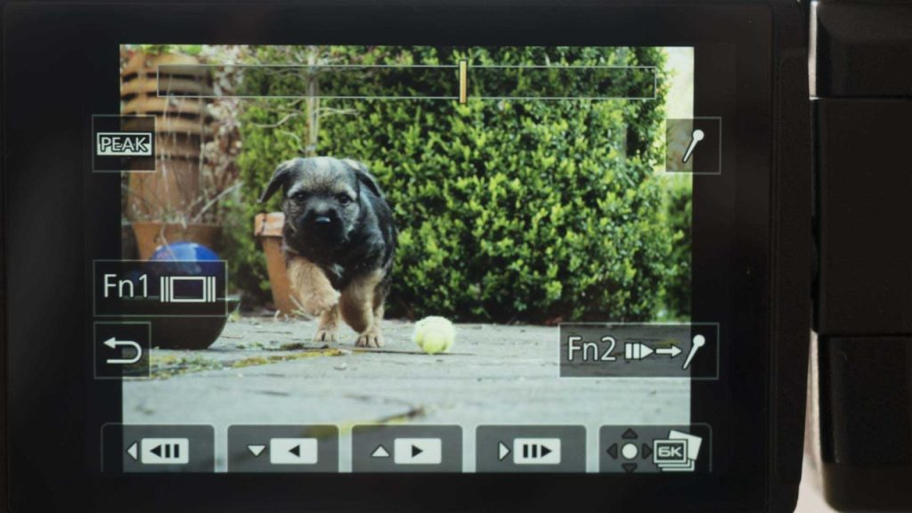 GH5 6K Photo frame selection screen