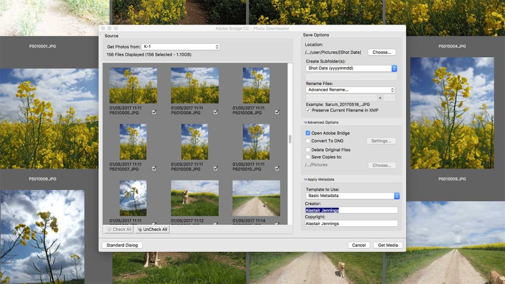 Download and organise your images