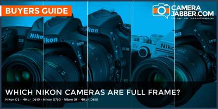 Which Nikon cameras are full frame, FX format?
