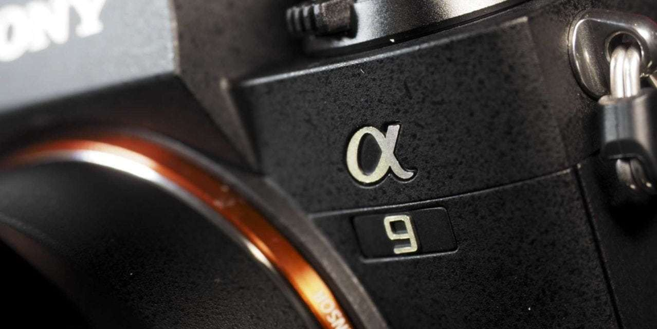Sony boosts A9 continuous AF, adds features with new firmware