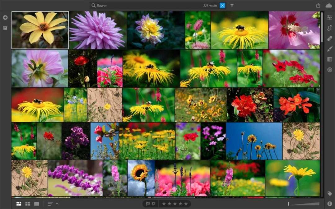 Lightroom CC Review: more tools and features