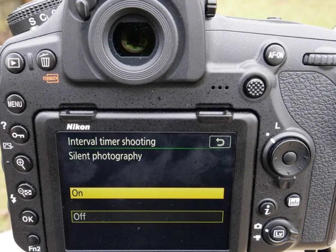 Nikon D850 timelapse tutorial: silent photography