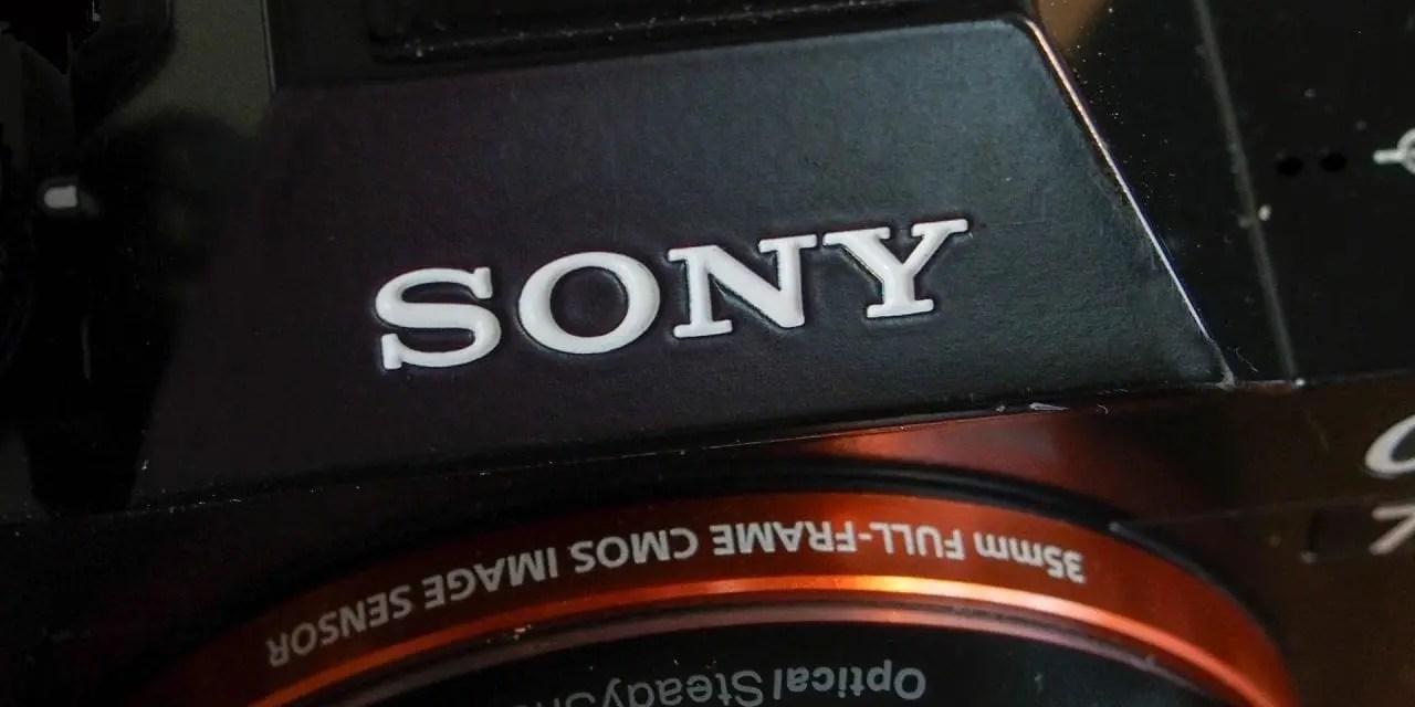 Sony: Animal Eye AF coming soon