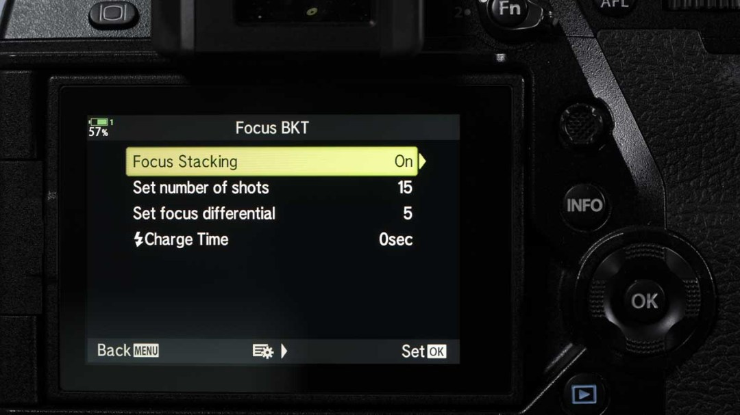 Olympus OM-D E-M1X review: Focus bracketing Focus stacking