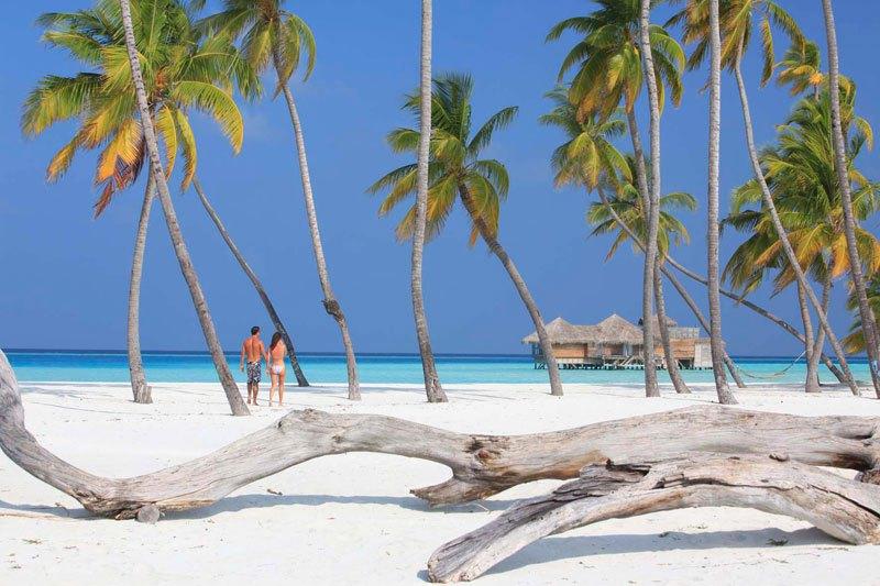 Гили Ланкафуши на Мальдивах - лучший отель 2015 года по версии TripAdvisor (27)