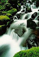 Soleduc Falls, Olympic National Park, Washington, photograph by Brent VanFossen