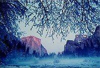 Yosemite, photograph by Brent VanFossen