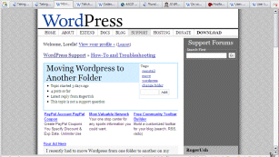 1024x768 view of the WordPress Support page
