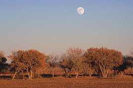 Moon over New Mexico landscape, photograph by Brent VanFossen