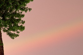 A rainbow can be serendipity or planned. Photo of rainbow at sunset by Brent VanFossen