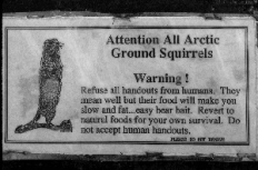 Warning sign to keep wild squirels wild