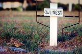 Owl's Nest sign near Burrowing Owl, photo by Brent VanFossen