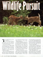 Outdoor and Nature Photography Magazine, article about wildlife photography